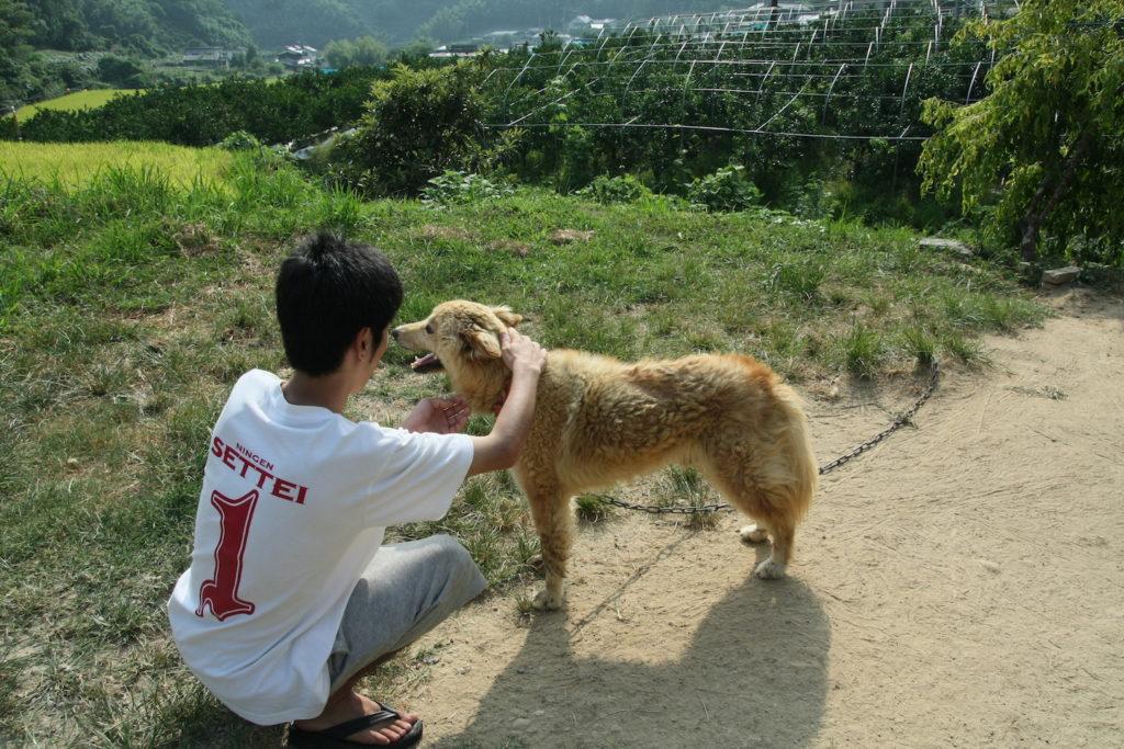 愛犬のマサムネと戯れる永井先生(普段全く世話をしないのでまるで懐いていない)
